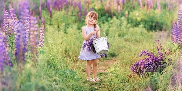 успокоительные травы для детей